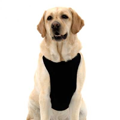 Kumfy Tailz Cooling & Warming Dog Harness with Gel Pack