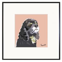 Framed Print: Cocker Spaniel, Black