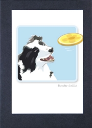 Border Collie W/ Frizby - Grrreen Boxed Note Cards