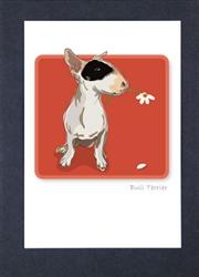 Bull Terrier  W/ Daisy - Grrreen Boxed Note Cards