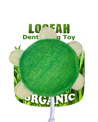 6 Pack Large Loofah Turtle