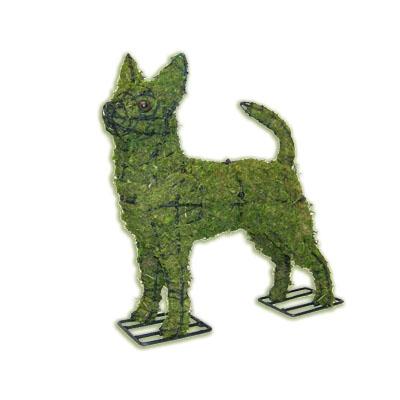 Topiary - Chihuahua