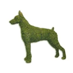 Topiary - Doberman