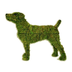 Topiary - Jack Russell