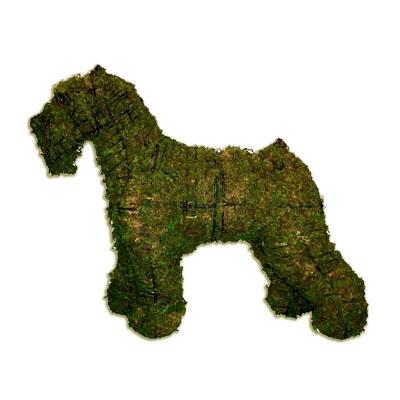 Topiary - Schnauzer