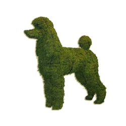 Topiary - Poodle (Small)