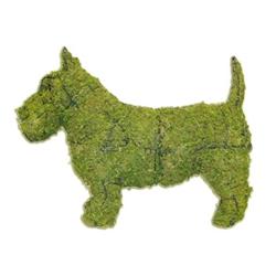 Topiary - Scottie