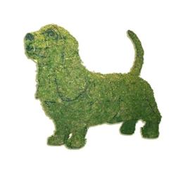 Topiary - Basset Hound
