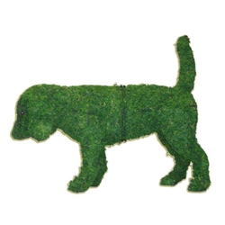 Mossed Topiary - Beagle