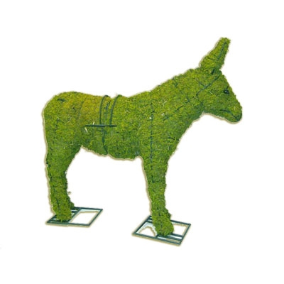 Mossed Topiary - Donkey