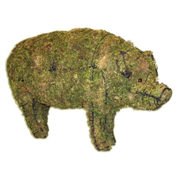 Topiary - Pig (Mossed)