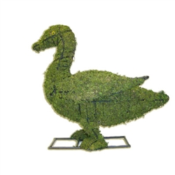 Mossed Topiary - Duck (Small)