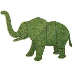 Topiary - Elephant (Mossed)