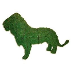 Topiary - Lion