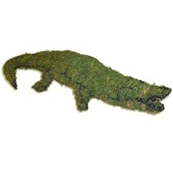 Topiary - Alligator (Mossed)