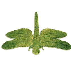 Mossed Topiary - Dragonfly