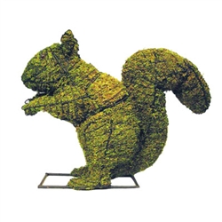 "Topiary - 12"" Squirrel (Small)"