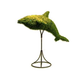 Topiary - Dolphin (Mossed)