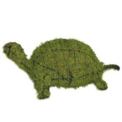 Topiary - Turtle (Mossed)