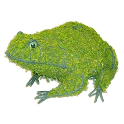 Topiary - Frog (Mossed)