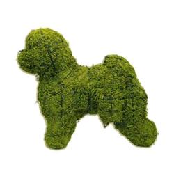 Topiary - Bichon