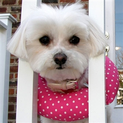 Puppy Bumpers - Pink Dot