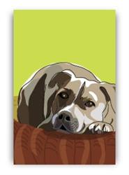 Pit Bull Terrier - Fridge Magnet