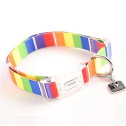 Contempo Rainbow Collar