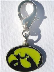 University of Iowa Hawkeyes Dog Collar Charm