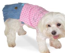 Mini Skirt Sanitary Pants
