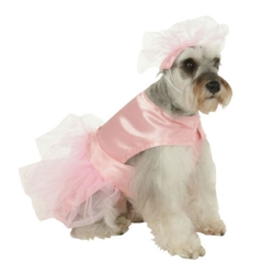 Ballerina Princess Costume /SMALL/MEDIUM