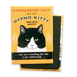 Cat - Hypno Kitty MAGNETS