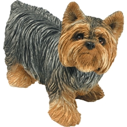 Sandicast Mid Size Yorkshire Terrier