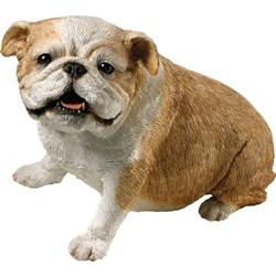 Sandicast Original Size Fawn Bulldog