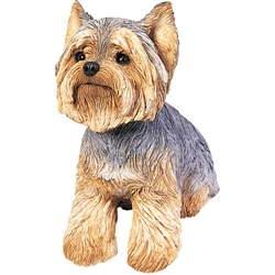 Sandicast Original Size Yorkshire Terrier