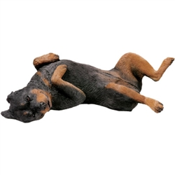 Sandicast Original Size Rottweiler