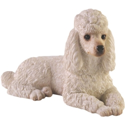 Sandicast Small Size White Poodle
