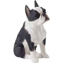 Sandicast Small Size Boston Terrier