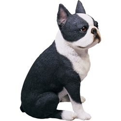 Sandicast Original Size Boston Terrier