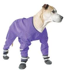 Dog Jog Rainsuit