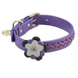 Petal Collar & Leash - Violet - Purple