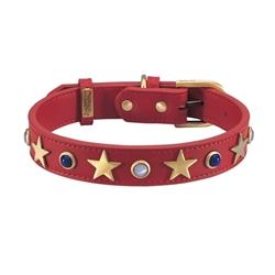 American Dog Collar & Leash - Red