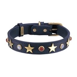 American Dog Collar & Leash - Blue
