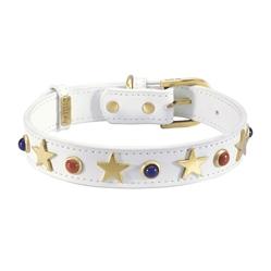 American Dog Collar & Leash - White