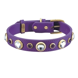 Diamond Collar & Leash - Purple