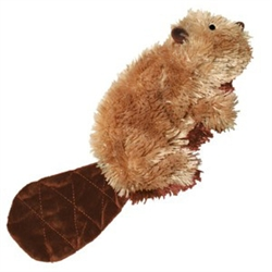 Dr. Noy's Beaver – Small