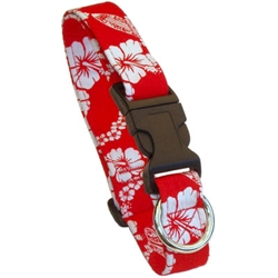 Laguna Red Beach Dog Collars and Leashes