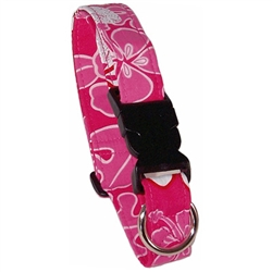 Panama Pink Beach Dog Collars and Leashes