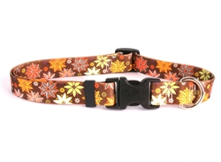 Autumn Flowers Collection