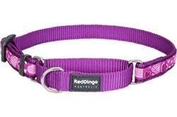 Breezy Love Purple - Martingale Collar